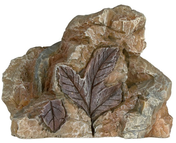 Sada 6 ks skalních útvarů se zkaměnělinami 10 cm