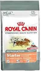 Royal canin Starter Mini 8,5kg