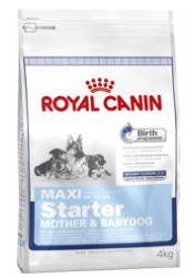 Royal Canin Maxi Starter M&B 4kg