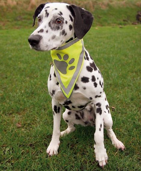 Reflexní šátek pro psa TRIXIE XS-S 22-28