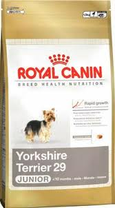 Royal Canin BREED Yorkshire Junior 500g