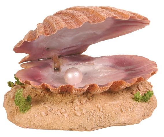 Mušle s perlou 15 cm TRIXIE