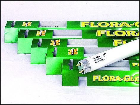 Zářivka Flora Glo T8 - 120 cm 40W
