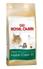 Royal Canin Feline BREED Kitten Maine Coon 10kg